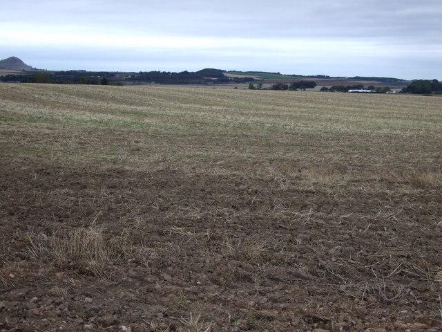 Farmland, West Fortune