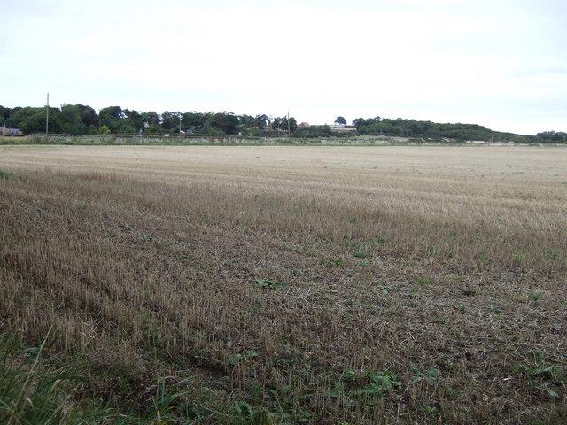 Farmland, Congalton Gardens