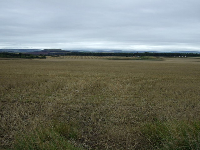 Farmland, Brownrigg