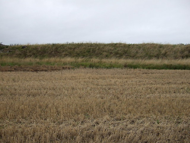 Stubble field and earth bank