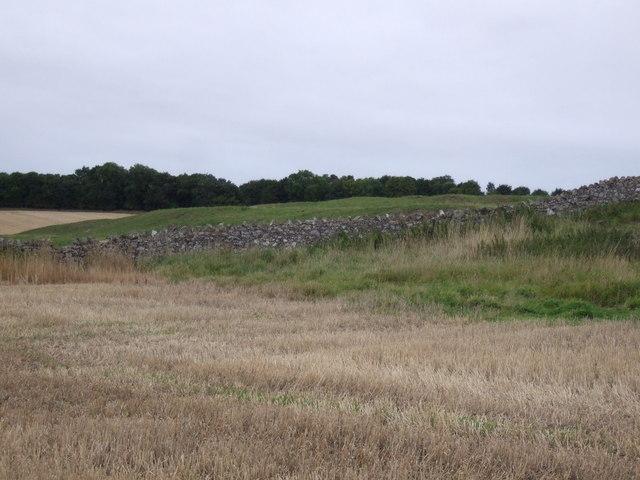 Stone wall near Brownrigg