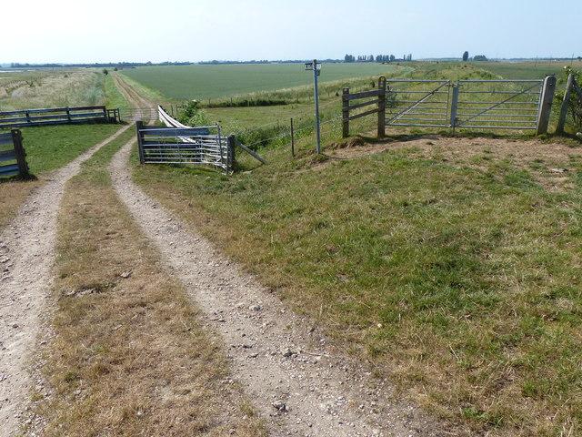 Farm track across Wyberton Marsh