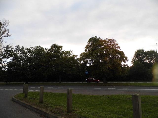 Braywick Road, Maidenhead