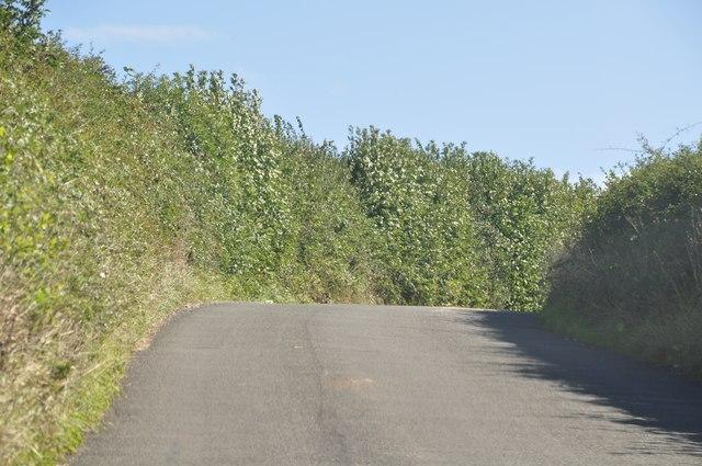 Mid Devon : Tiverton Road
