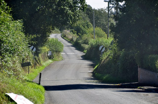 Ellerhayes : Country Road