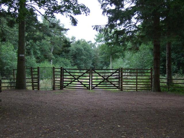 Gated track into woodland