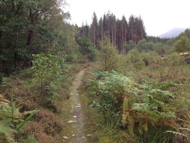 Path along The Cour, Leanachan Forest