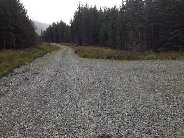 Forestry road in Leanachan Forest