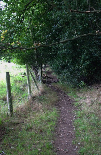 Public footpath at the edge of Ribbesford Wood, near Bewdley, Worcs