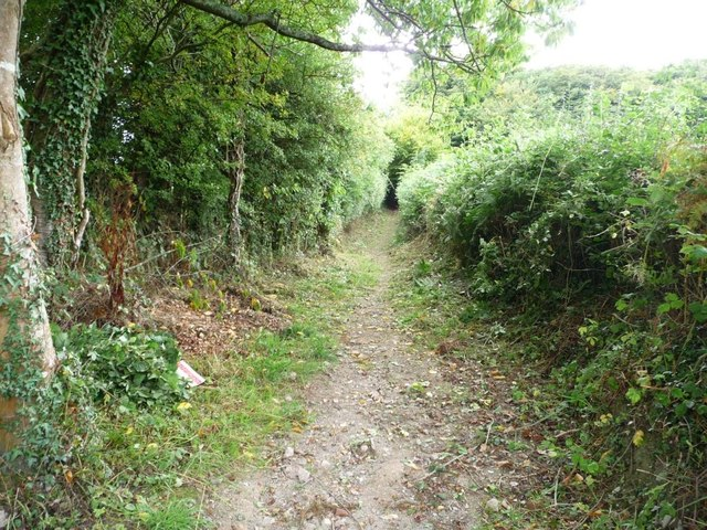 Public footpath to Jenny's Bushes