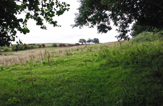 Farmland adjacent to Ribbesford Wood, near Bewdley, Worcs