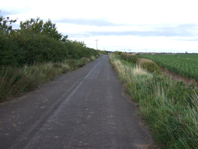 Cycle path towards West Barns