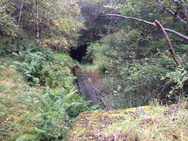 Draining pipe in Leanachan Forest