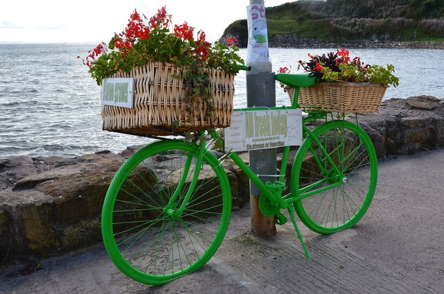 Green bicycle, Pittenweem