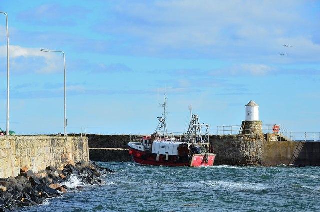 'Taurus' entering harbour