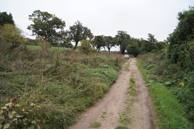 Harrow Way near Ashe Warren