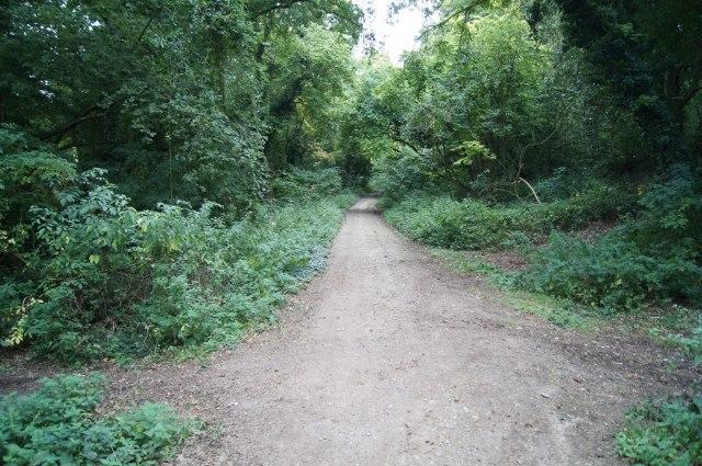 View along the Harrow Way