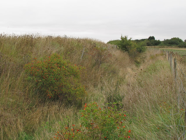 Ditch between flood defence and arable land
