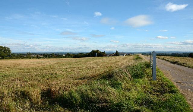 Field at Upper Woodhouse Farm