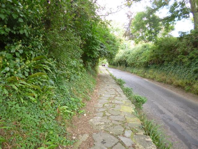 Bothenhampton, pavement