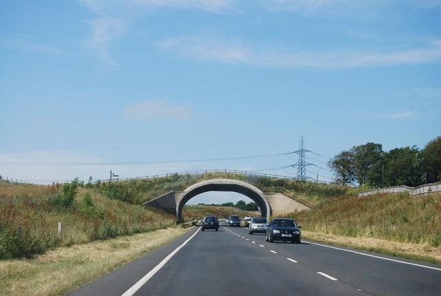 Bridge across the A354