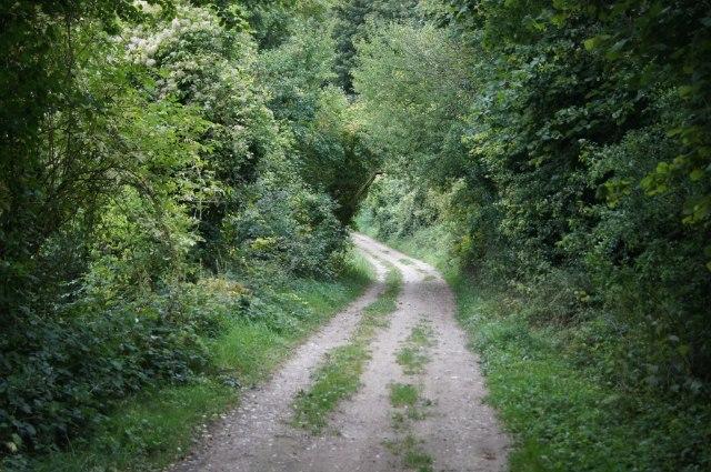 Harrow Way - west of B3051