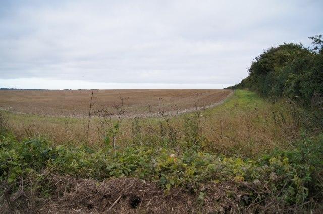 Fields north of the Harrow Way