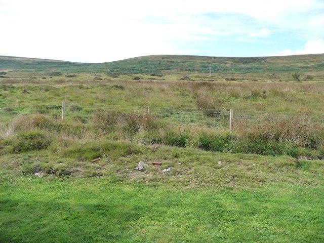 Moorland near Coity Farm