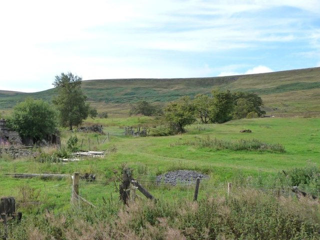 Field with track, north of Ty Rheinallt ruins