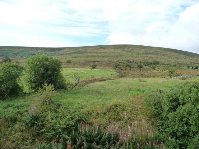 Zig-zag boundary between farmland and moorland