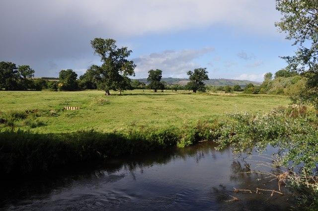 Columbjohn : The River Culm