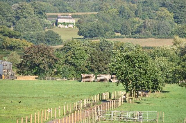 East Devon : Grassy Field