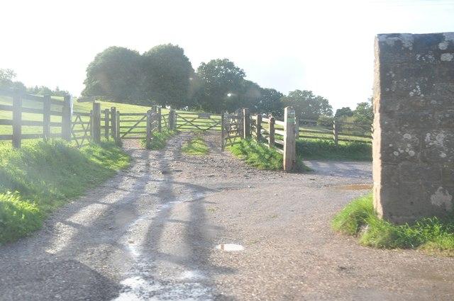 East Devon : Small Track
