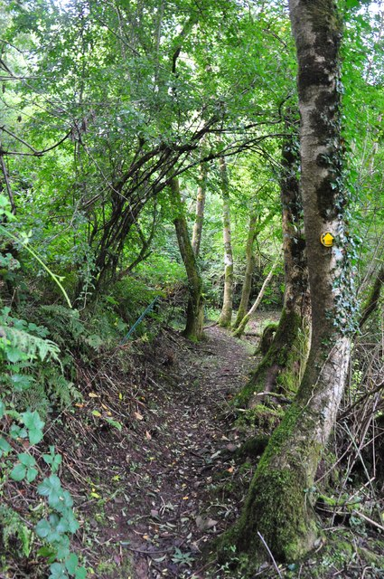 Mid Devon : Public Footpath