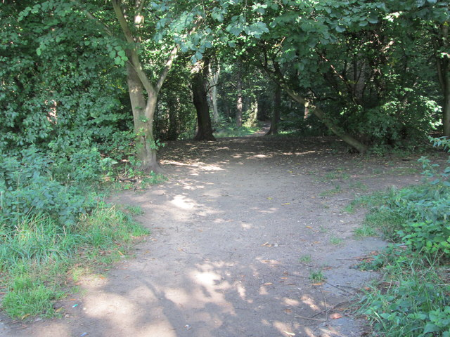Woodland path - end of Gipton Wood Road