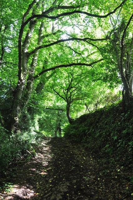 Mid Devon : Small Track
