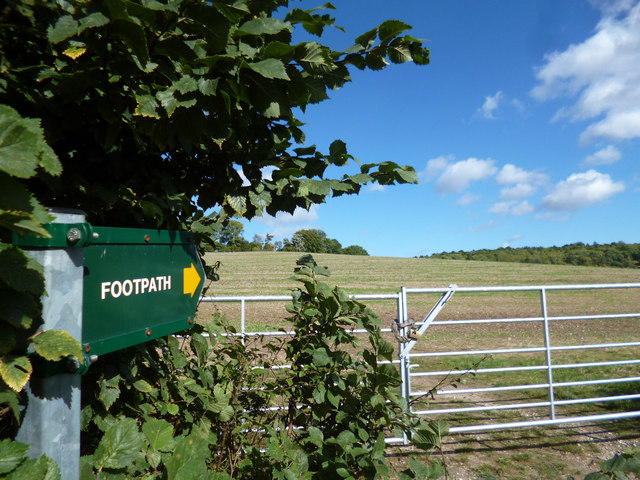 Footpath and Field Gate