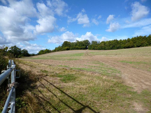 Path into Buckinghamshire