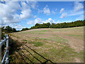 SU7386 : Path into Buckinghamshire by Des Blenkinsopp