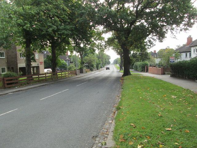 Oakwood Lane - viewed from Montagu Place