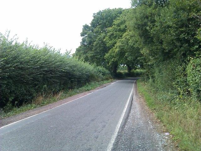 Firtree Lane