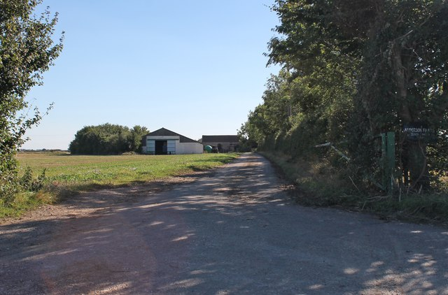 Road to Stocks Heath Farm