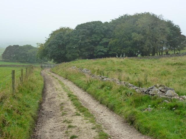 Bridleway approaching Oxlow Rake