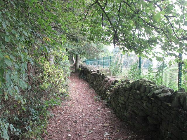Footpath beside Dawson Plantation