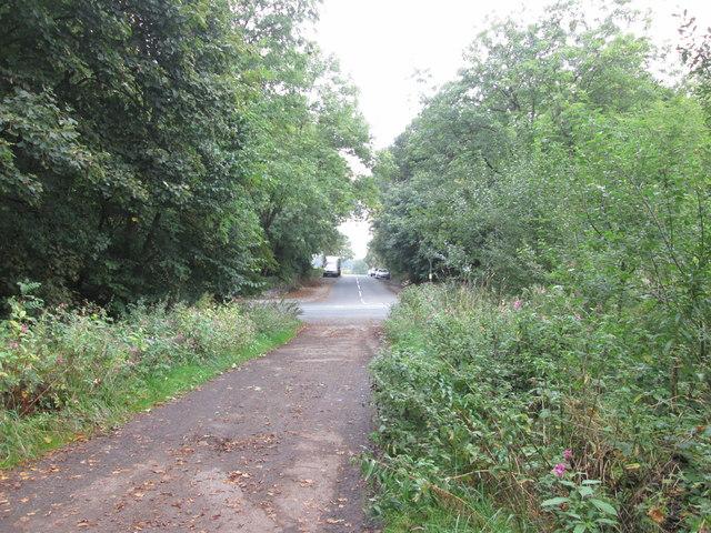 Road junction at Top Lane Plantation