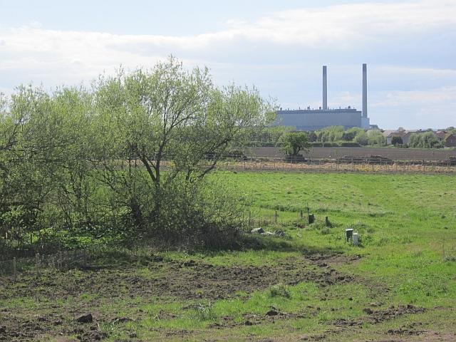 Field behind Port Seton