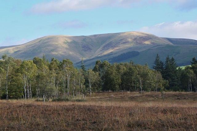 Moorland near Black Barony
