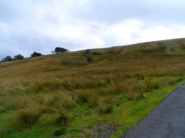 Road to Slaidburn near Merrybent Hill