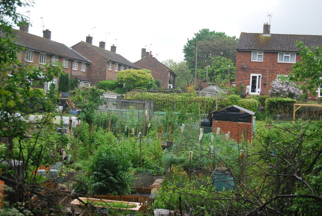 Allotments by the Worth Way