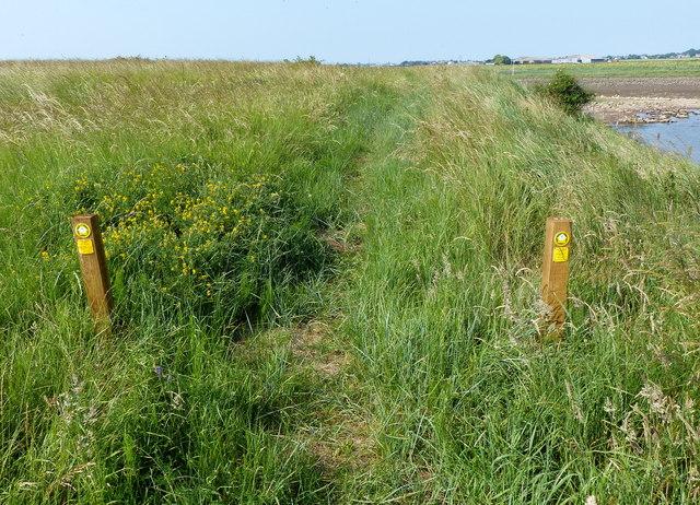Footpath markers along the Macmillan Way